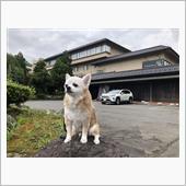 愛犬と・・県内の温泉ホテルに宿泊・・^^;))