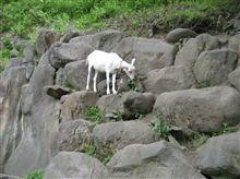 長野県の温泉地めぐり