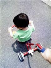 セレナに乗って癒しの公園に行こう~(^-^)/
