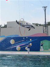 イルカが飛んだ日