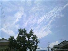 夏らしい日になりました。