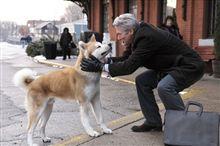 HACHI~約束の犬〜