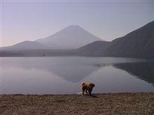 本栖湖キャンプ 2009夏☆☆☆
