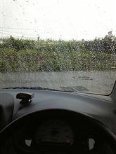 せっかく洗車したのに・・・