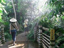 ローコストで行こう[293] 夢の島熱帯植物館