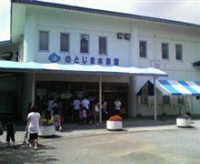 今日の水族館