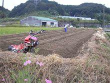 野菜を植える畑♪
