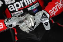 MJ Tribute Gloves