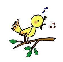 小鳥のさえずりで目が覚めました。