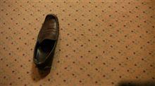3.4L/100kmと片割れの靴