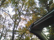 久しぶりに屋根を開けて。