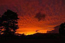 11/13の夕陽は綺麗でしたね