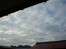 11月29日 寒~い日曜日の朝、おはです~♪