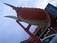 ★蟹!カニ!かに!~♪食べまくり~@久美浜・京丹後市 2009年の巻・・・