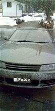 雪、降ってきましたね。