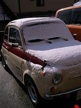 チンクの雪化粧