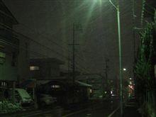 名古屋市内も吹雪き