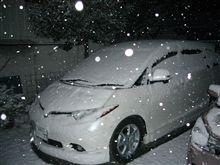 ホワイトお正月