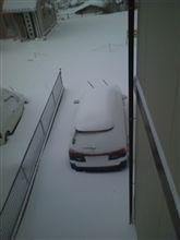 謹賀新年の雪(^_^;)