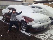 謹賀新年!わぉ~雪だぁ~(゜o゜;)
