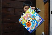 【Wii】 息子がお年玉で!
