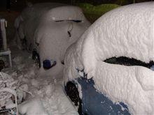 雪が予想以上に積もりましたね~