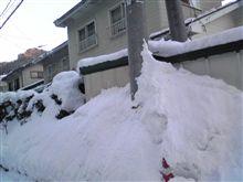 埋もれた(^_^;)