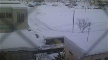大雪のせいで・・・