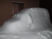 大雪、大変でしたね、、、、、。