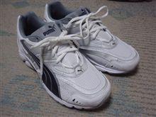 靴買いに行って行って来ました!の巻