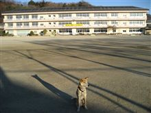東山小学校とケン