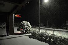 雪の筑波山へ
