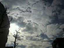 空をとってみました(- -)