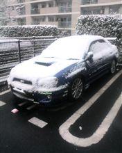 今朝は雪が降りましたね