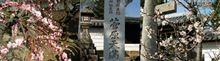 菅原神社のおんだまつり、何それ?