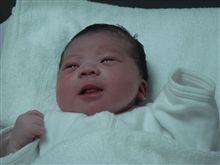 生まれました。