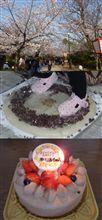 誕生日と餅踏み、そして花見・・・。゚+.(・∀・)゚+.
