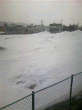 青森は今日も雪だった