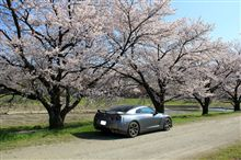 GT-Rと桜との相性