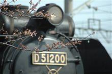 過去画像、「坊主」梅小路蒸気機関車館