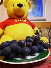 造園の会社に勤める友人が^^家庭菜園で出来たブドウを・・・長~