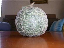 メロン収穫と試食