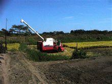 稲刈りも8割くらい終了。