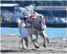吾妻神社 馬だし祭り