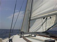 何十年とヨットに乗っているけどこれほど・・・