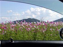 プレの車窓から ③