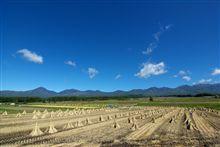 八ヶ岳エコーラインの水田