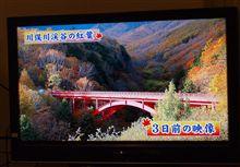 八ヶ岳の紅葉間接観賞~