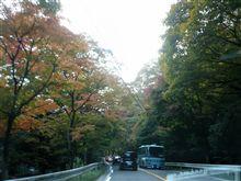 終日、天気に恵まれた紅葉狩り♪