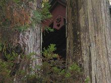 パワースポット IN二荒山神社